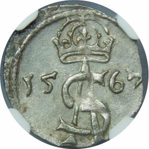 Zygmunt II August, Dwudenar 1567, Wilno
