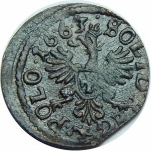 Jan II Kazimierz, Szeląg koronny 1663 TLB