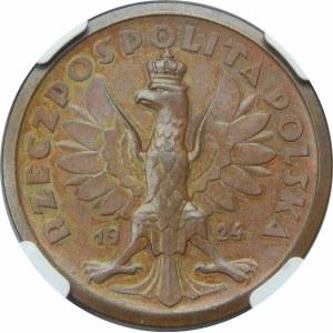 PRÓBA 50 złotych Klęczący Rycerz 1924 MIEDŹ