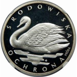 PRÓBA SREBRO 1000 Złotych Łabędź 1984