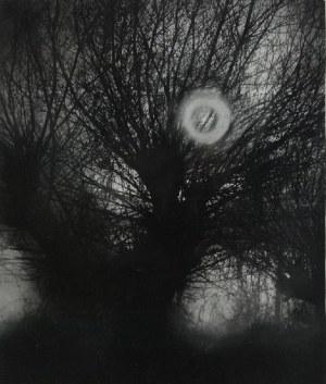Edward HARTWIG (1909-2003), Rodzinna sprawa, 1985