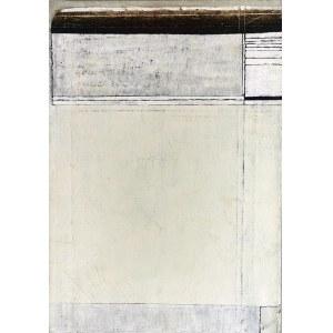 Marek SUŁEK (ur. 1963), 34 odcienie bieli, 1992