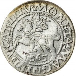 Zygmunt II August [1544 (1548) –1572], półgrosz litewski, Wilno; 1565