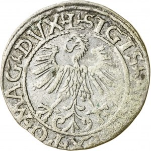 Zygmunt II August [1544 (1548) –1572], półgrosz litewski, Wilno; 1561