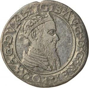Zygmunt II August [1544 (1548) –1572], czworak litewski, Wilno; 1566, R