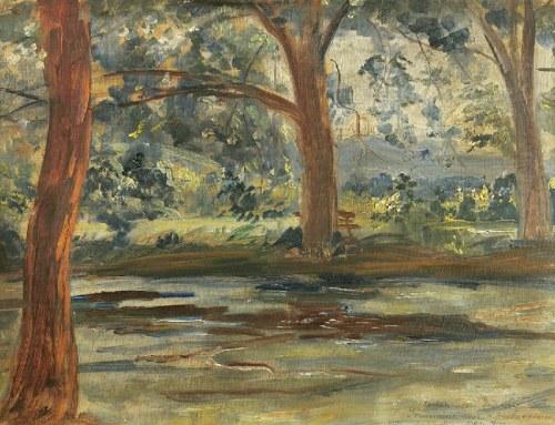 Wincenty WODZINOWSKI (1866-1940), Pejzaż