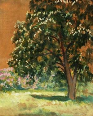 Stefan Filipkiewicz (1879 - 1944), Kwitnące drzewo