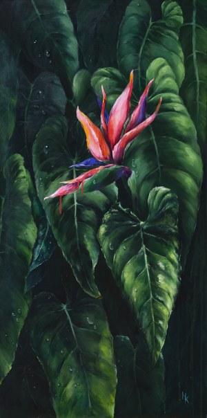 Khrystyna Hladka, Kwiat egzotyczny, 2018