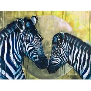 Jose Angel Hill, Zebras
