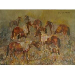 Dominika Kapczyńska, Rodzina koni