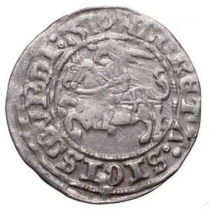Sigismund I the Old, Halfgroat 1510, Vilnius