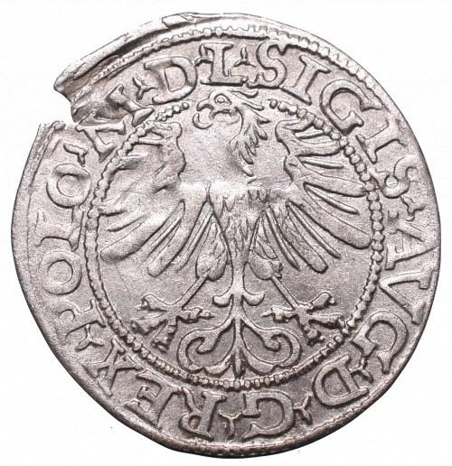 Sigismund II Augustus, Halfgroat 1565, Vilnius