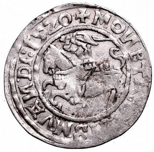 Sigismund I the Old, Halfgroat 1520, Vilnius