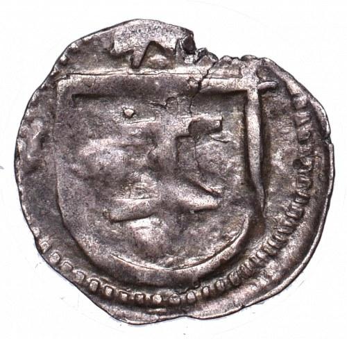 Vladislaus II, Denarius without date, Fraustadt