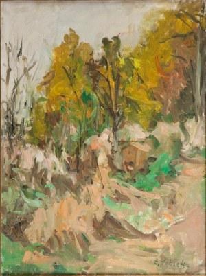 Zygmunt Schreter (1886 Łódź - 1977 Francja) Krajobraz leśny