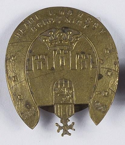 Odznaka Ułani Lwowscy Ochotnicy. Żołnierska