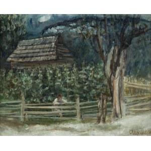 Menkes Zygmunt, HUCULSKIE ZALOTY, LATA 20 XX W.