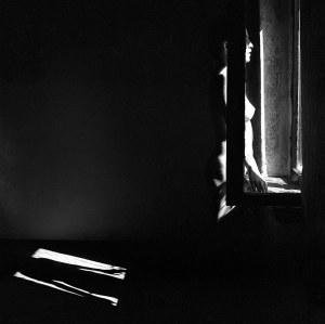 Rafał Kaźmierczak, In the shadow, 2016