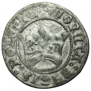 Aleksander Jagiellończyk (1501-1506) - Półgrosz koronny bez daty