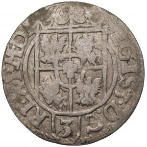 Zygmunt III Waza (1587-1632) - Półtorak 1621 Bydgoszcz – Rzadka dla tego rocznika ozdobna tarcza z herbem Sas