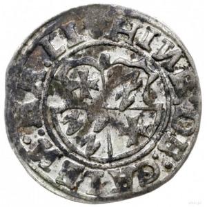 ferding 1555, Tallin; Haljak 163a; patyna, dość ładny