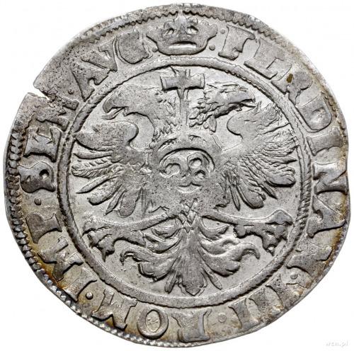 28 stuberów (floren) bez daty, z tytulaturą Ferdynanda ...