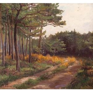 Carl Coven Schirm (1852 Wiesbaden – 1928 Amelinghausen), Droga