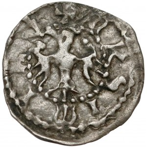 Kazimierz III Wielki, Denar Kraków bez daty - błąd MKSIMIRV - b. rzadki