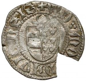 Hospodarstwo Mołdawskie, Aleksander I Dobry (1400-30), Dwugrosz Suczawa