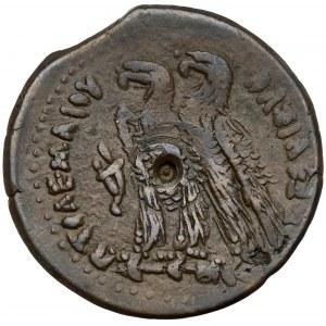 Egipt, Ptolemeusz VI Philometor (170-164 pne), AE29