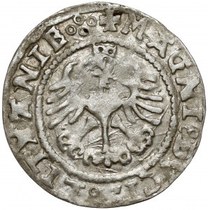 Zygmunt I Stary, Półgrosz Wilno 1527 - z BŁĘDAMI - rzadki