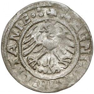 Zygmunt I Stary, Półgrosz Wilno 1519 - błąd LITANIE, odwrócone N