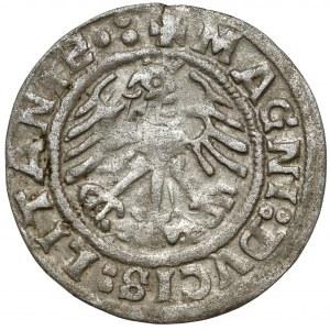 Zygmunt I Stary, Półgrosz Wilno 1519 - błąd LITANIE, poprawne N