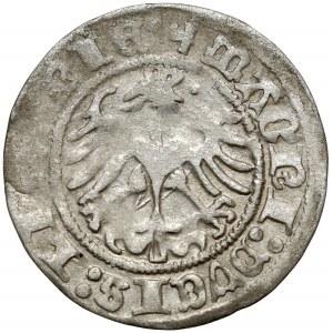 Zygmunt I Stary, Półgrosz Wilno 1513 - pełna data - rzadki