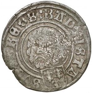 Śląsk, Jan V Turzo, Grosz Nysa 1507