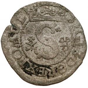 Zygmunt III Waza, Szeląg Wschowa 1596 - bez IF - rzadki
