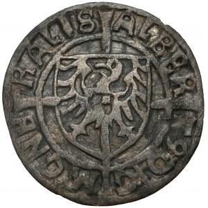Zakon Krzyżacki, Albrecht Hohenzollern, Grosz Królewiec 1523