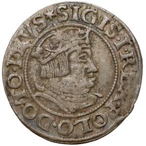 Zygmunt I Stary, Grosz Gdańsk 1535 - nowe pop. - szerokie krzyże