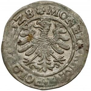 Zygmunt I Stary, Grosz Kraków 1528 - rozetki