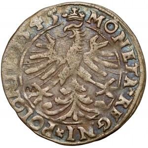 Zygmunt I Stary, Grosz Kraków 1545 - ex. Antoni Ryszard