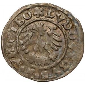 Śląsk, Świdnica, Ludwik Jagiellończyk, Półgrosz 1526