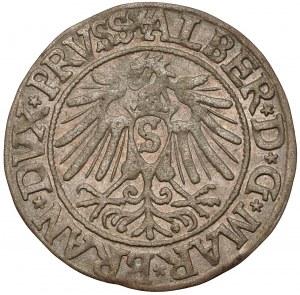 Prusy, Albrecht Hohenzollern, Grosz Królewiec 1538