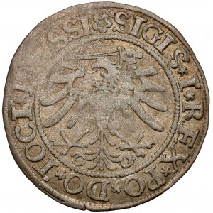 Zygmunt I Stary, Grosz Elbląg 1533 - pierwszy