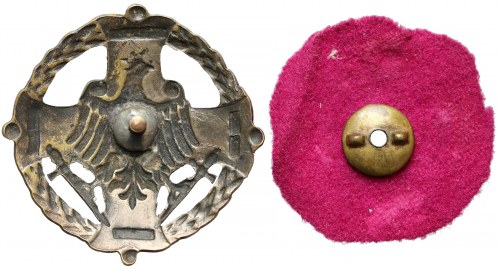 Odznaka, Za Wołyń - Styr Horyń Słucz - 1919