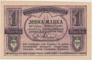 Gniezno/Witkowo, 1 marka 1919