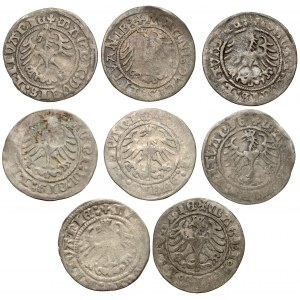 Półgrosze Zygmunt I Stary - Wilno 1509-1521 (8szt)