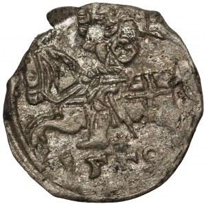 Zygmunt II August, Denar Wilno 1559