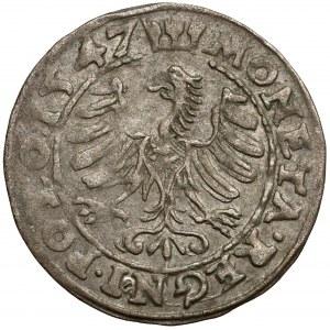 Zygmunt I Stary, Grosz Kraków 1547 - STT