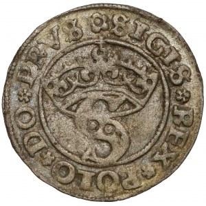 Zygmunt I Stary, Szeląg Toruń 1529