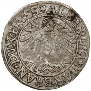 Prusy, Albrecht Hohenzollern, Grosz Królewiec 1535 - PRVSS